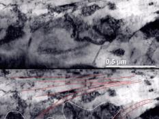 Снимок поперечного шлифа ролика, приработанного на машине трения с применением триботехнических составов, под микроскопом. В приповерхностной области наблюдаются протяженные домены размером 50-200 нм, ориентация которых приближается к горизонтальной вблизи поверхности. Такого изменения ориентации доменов не наблюдалось в образцах трения без трибосоставов. На нижнем снимке протяженные структуры подчеркнуты красными линиями. Изначальная структура доменов отмечена белым.